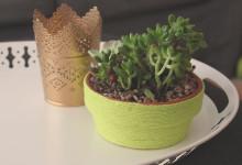 Yarn Wrapped Planter