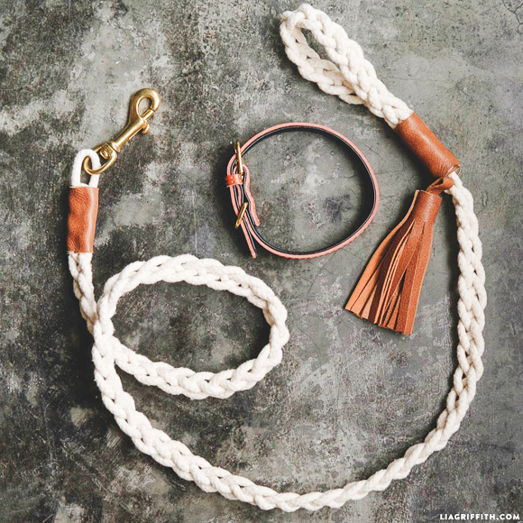 braided_dog-leash